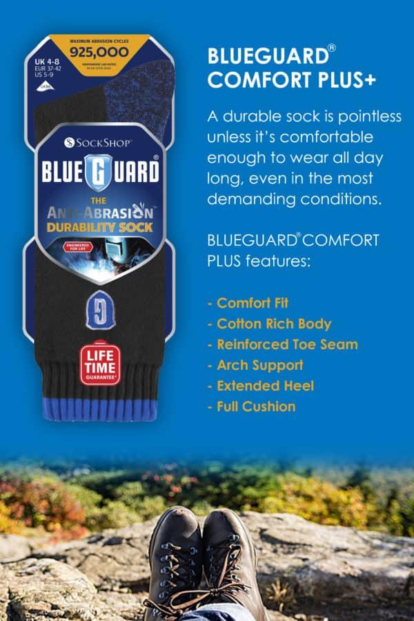 Blueguard Info Panel 1