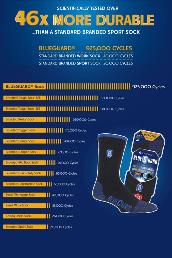 Blueguard Info Panel 3